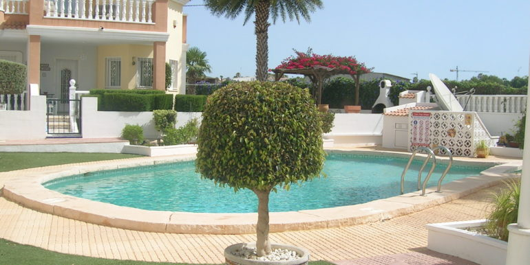 Pool and Gdn pic 2